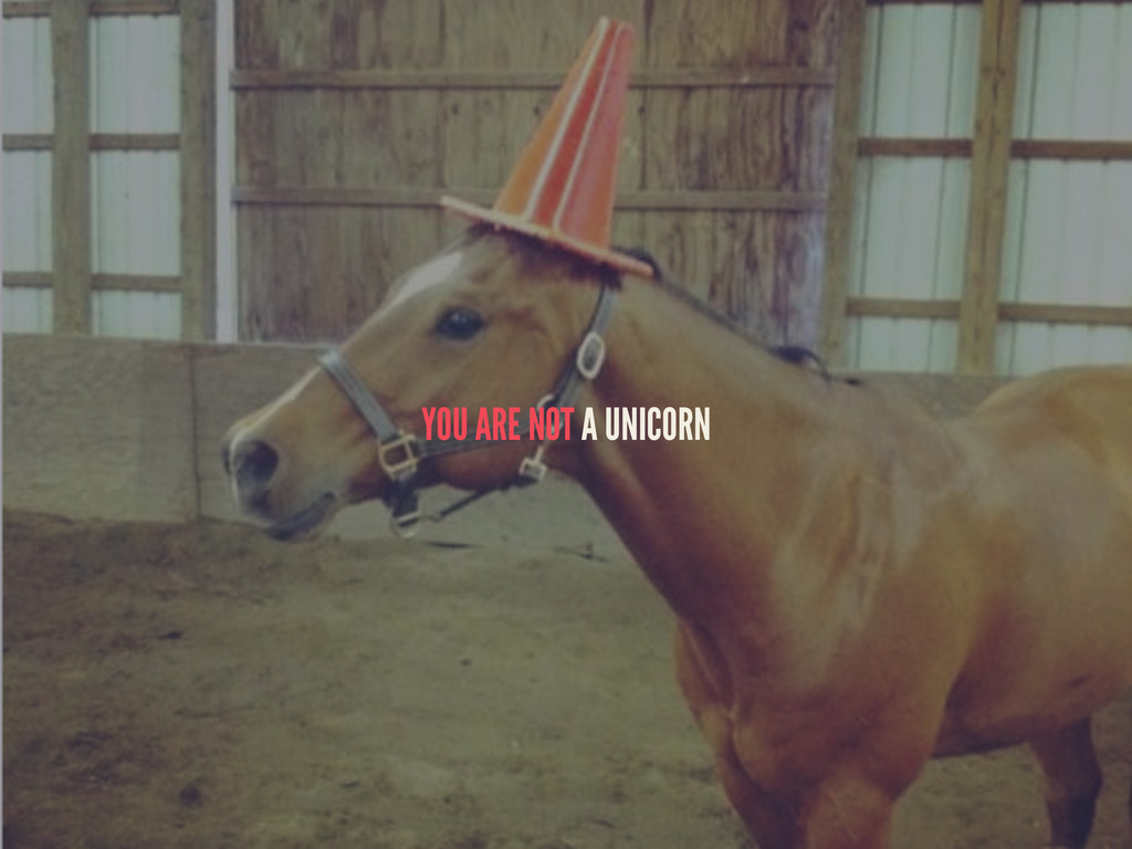 YOU ARE NOT A UNICORN