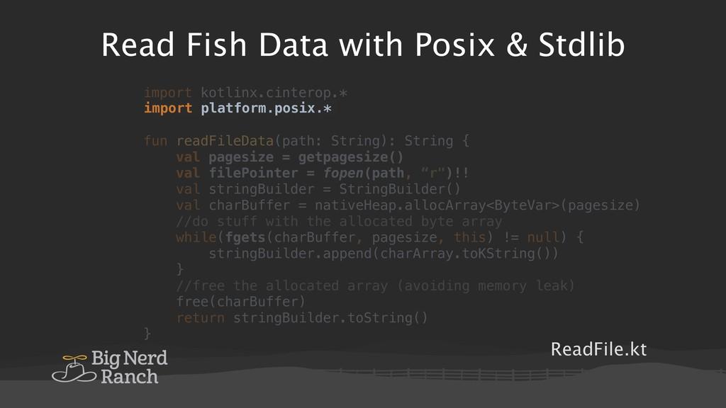 Read Fish Data with Posix & Stdlib ReadFile.kt ...