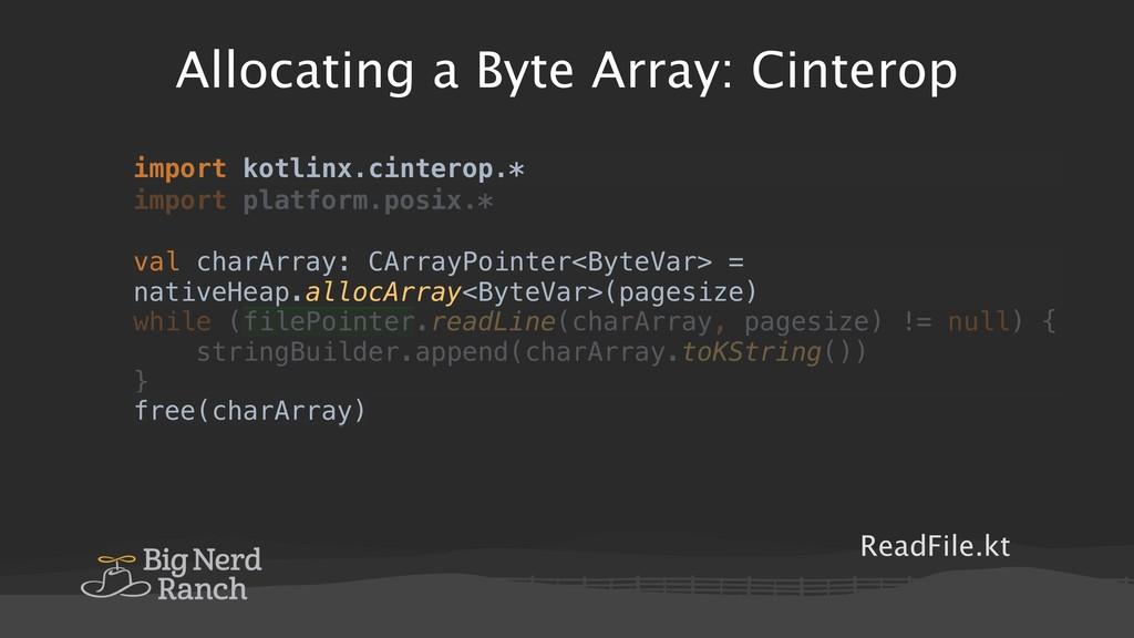 Allocating a Byte Array: Cinterop ReadFile.kt i...
