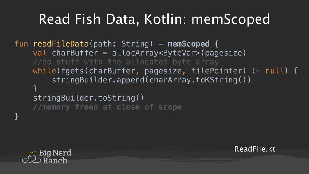 Read Fish Data, Kotlin: memScoped ReadFile.kt f...