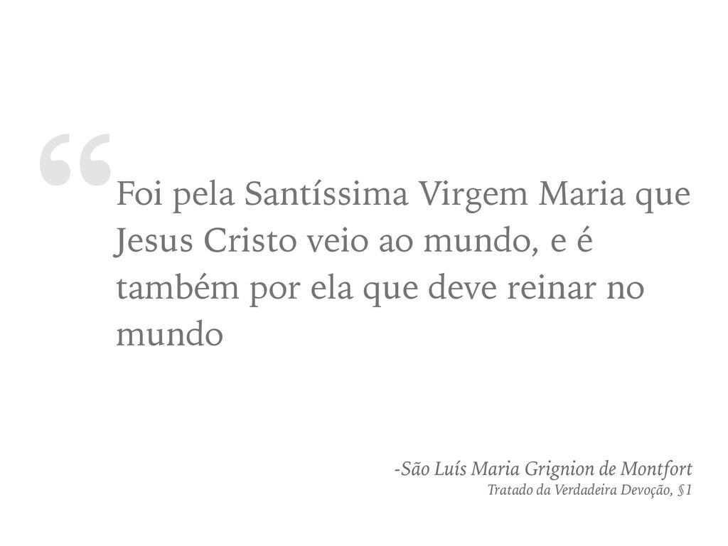 """""""Foi pela Santíssima Virgem Maria que Jesus Cri..."""