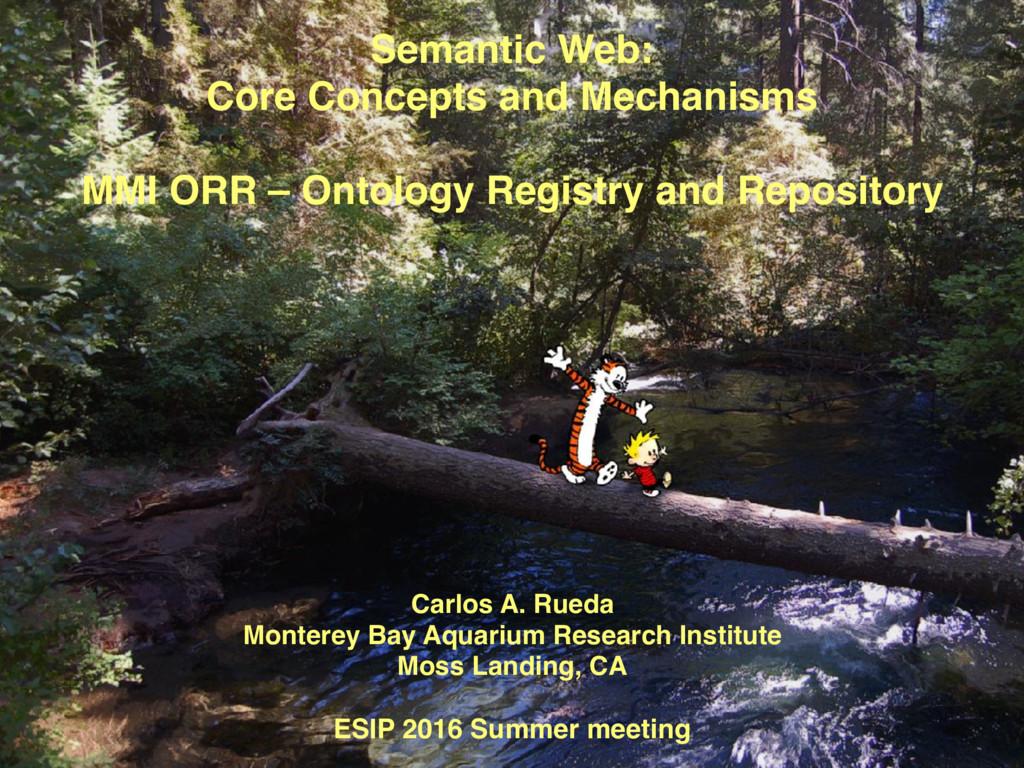 Semantic Web:  Core Concepts and Mechanisms M...