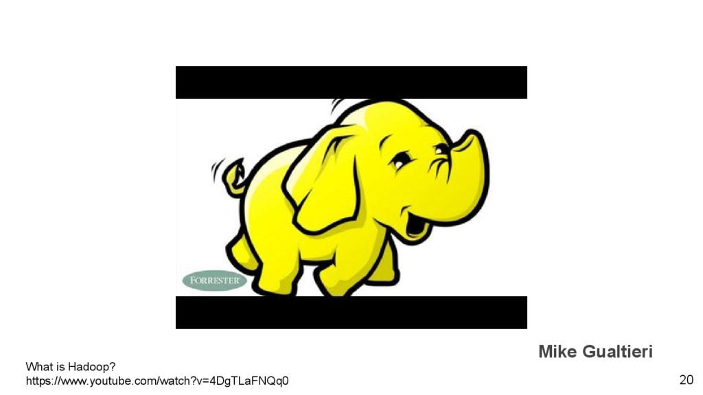 Mike Gualtieri 20 What is Hadoop? https://www.y...
