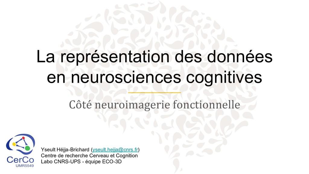 La représentation des données en neurosciences ...
