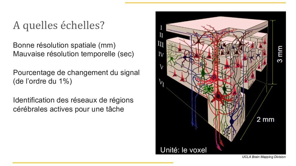 A quelles échelles? Bonne résolution spatiale (...