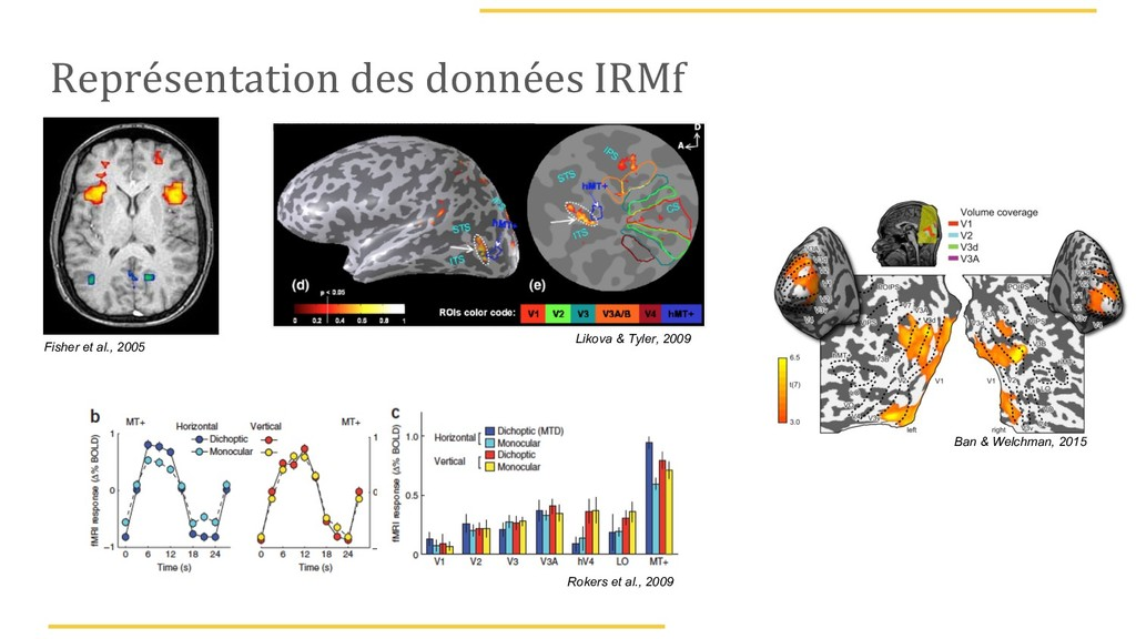 Représentation des données IRMf Rokers et al., ...