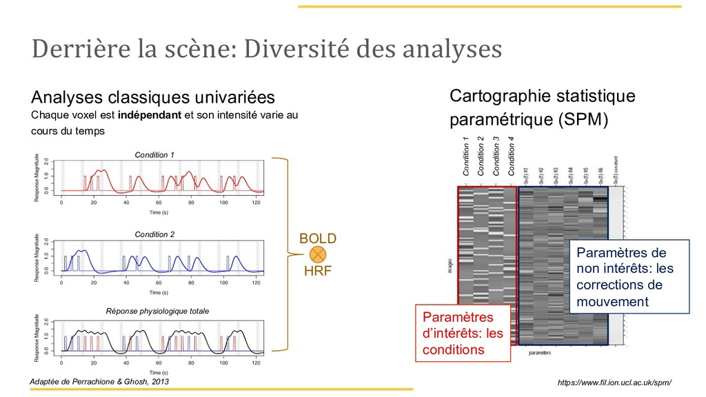 Derrière la scène: Diversité des analyses Analy...
