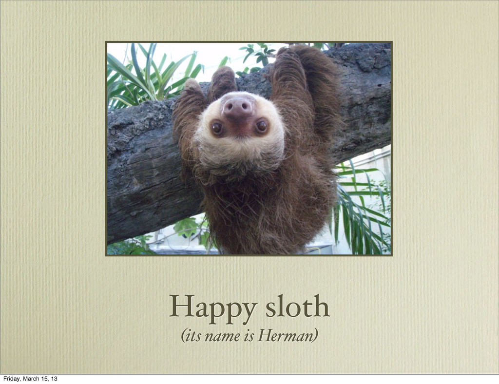 Happy sloth (its name is Herman) Friday, March ...