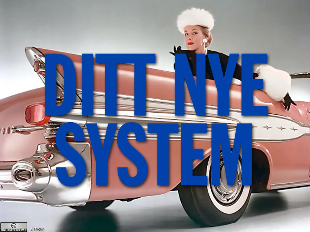/ Flickr DITT NYE SYSTEM