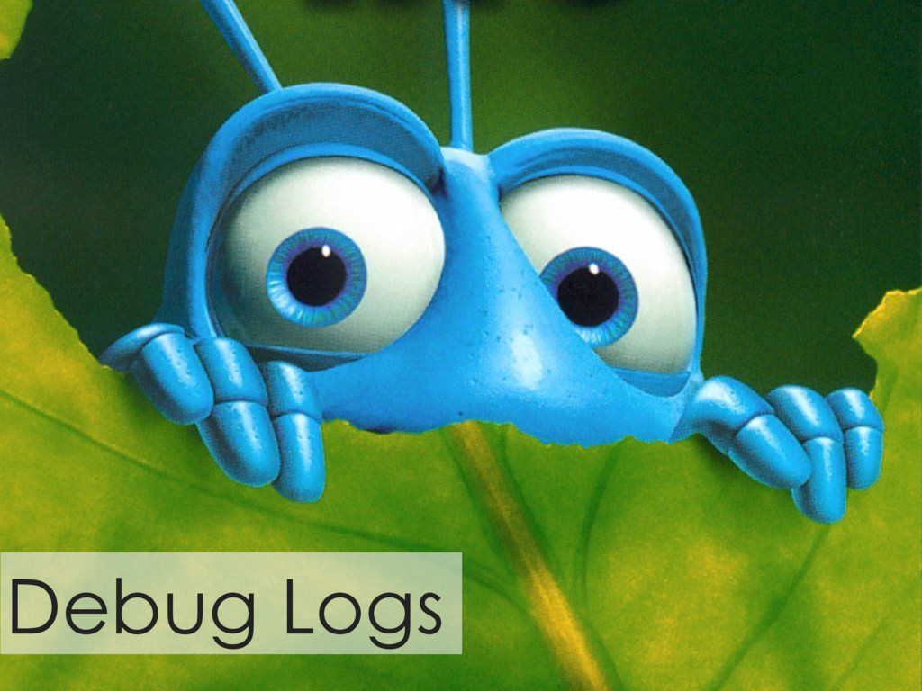 Debug Logs