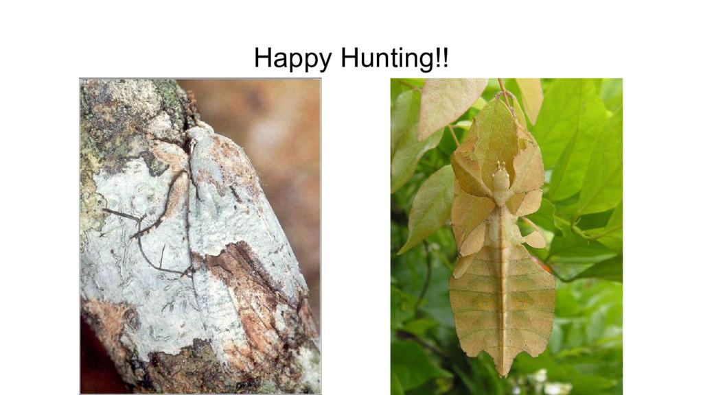 Happy Hunting!!