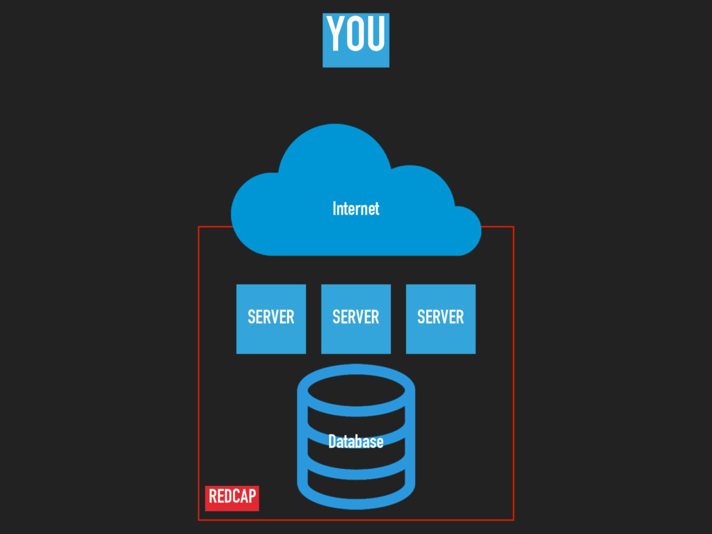 SERVER Database Internet SERVER SERVER YOU REDC...