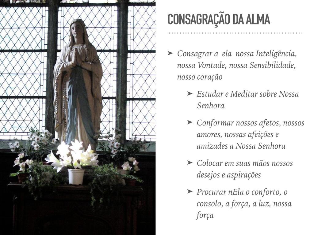CONSAGRAÇÃO DA ALMA ➤ Consagrar a ela nossa Int...