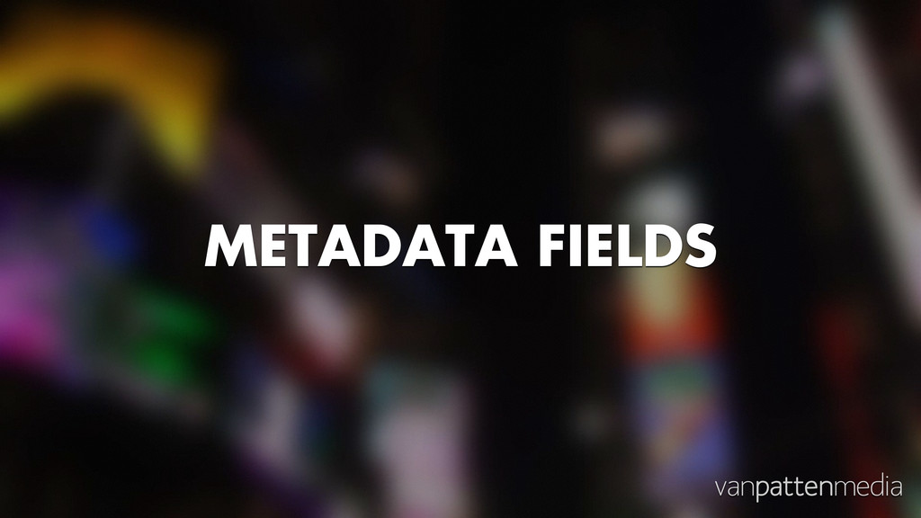 METADATA FIELDS