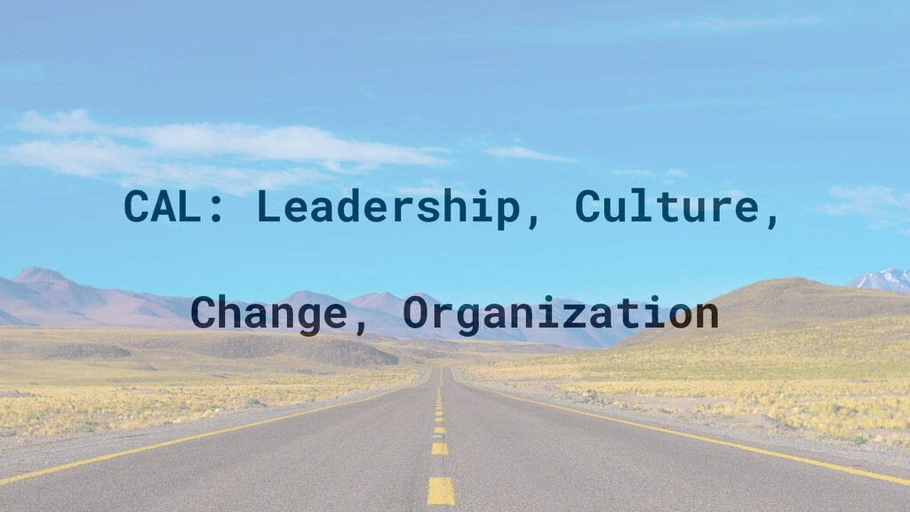CAL: Leadership, Culture, Change, Organization