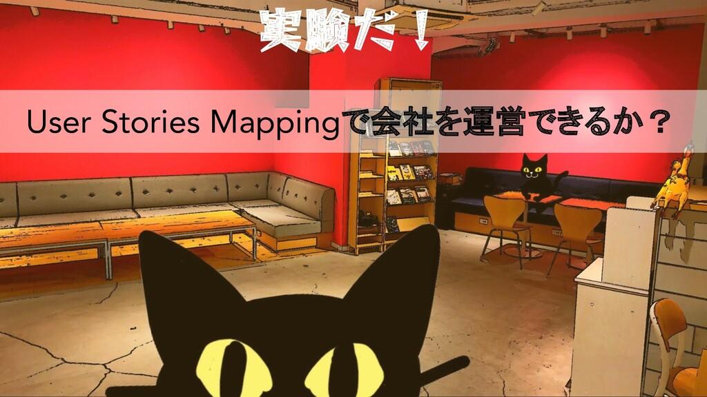 実験だ! User Stories Mappingで会社を運営できるか?