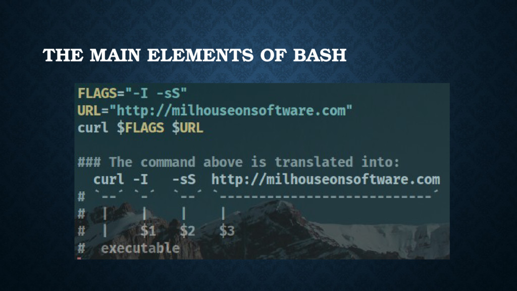THE MAIN ELEMENTS OF BASH