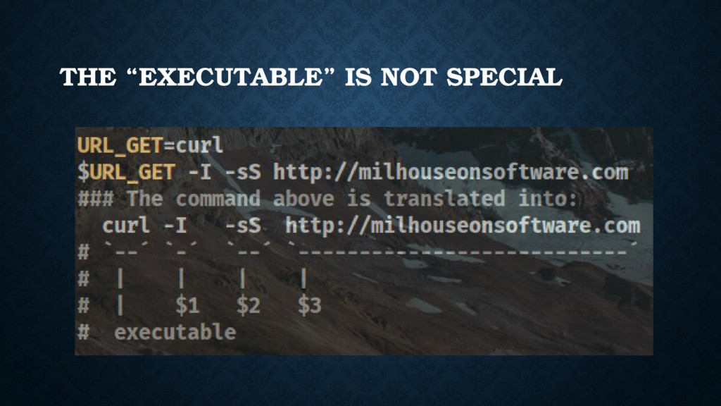 "THE ""EXECUTABLE"" IS NOT SPECIAL"