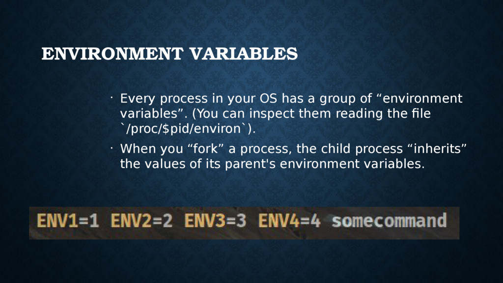 ENVIRONMENT VARIABLES • Every process in your O...