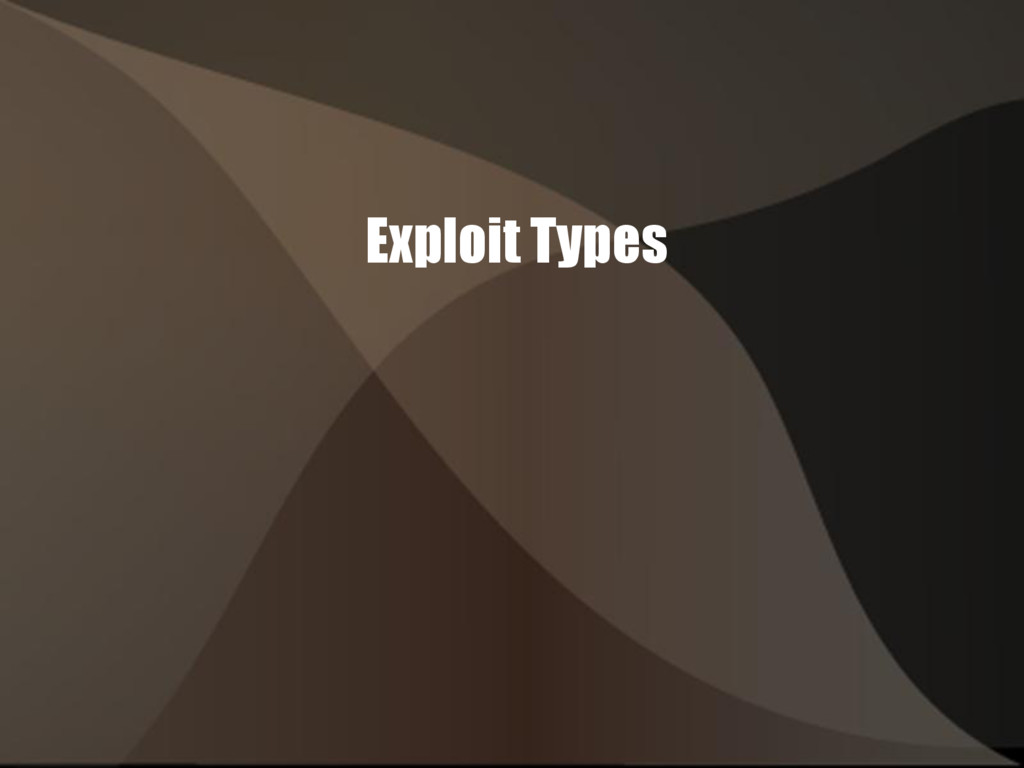 Exploit Types