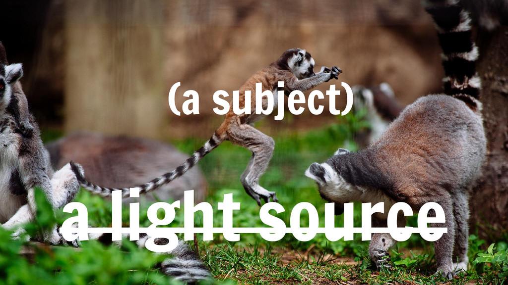 a light source (a subject)