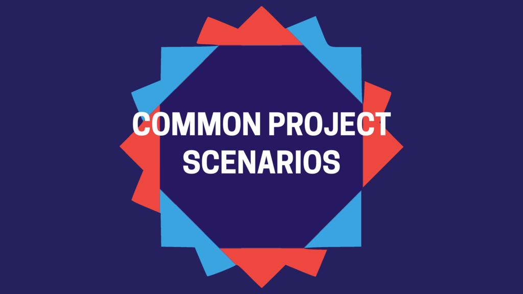 COMMON PROJECT SCENARIOS