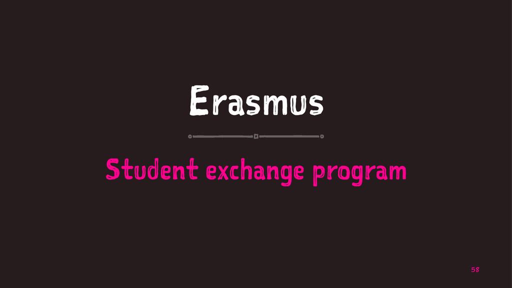 Erasmus Student exchange program 58