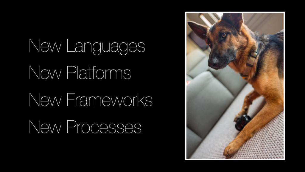 New Languages New Platforms New Processes New F...