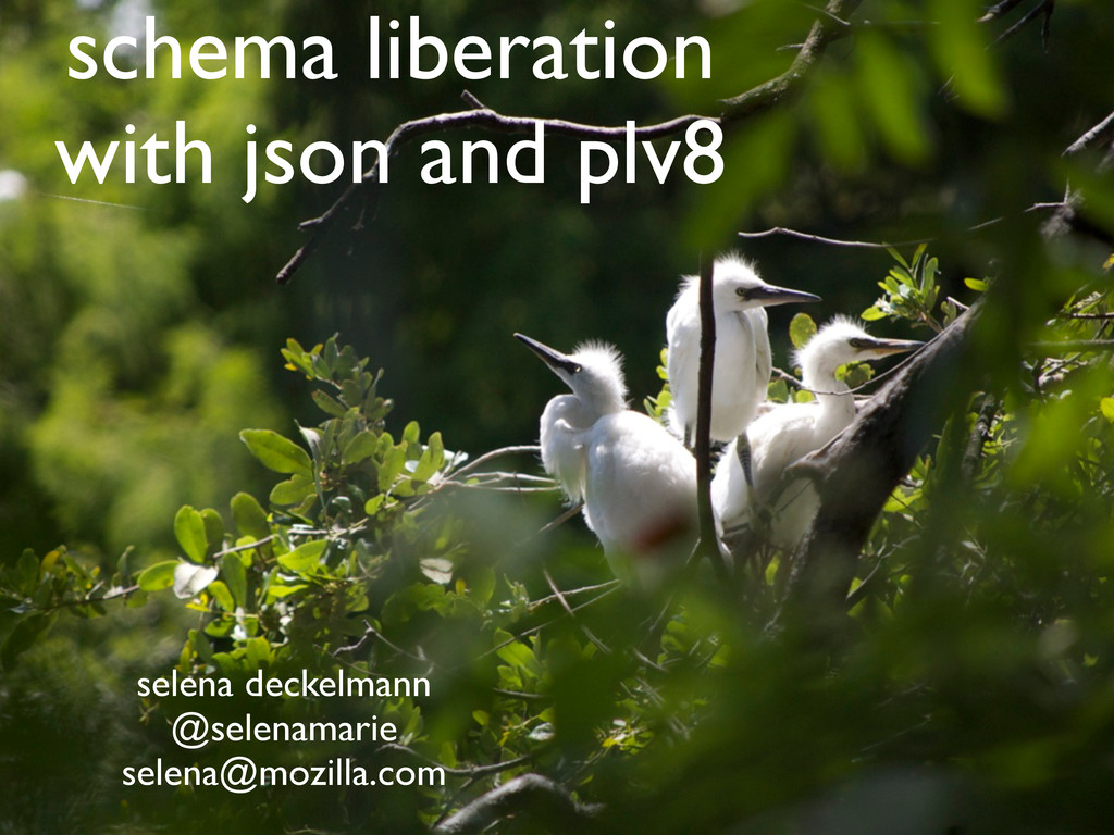 schema liberation with json and plv8 selena dec...