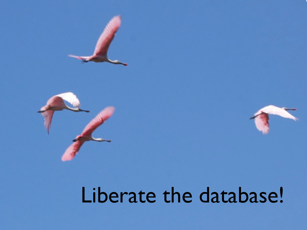 Liberate the database!