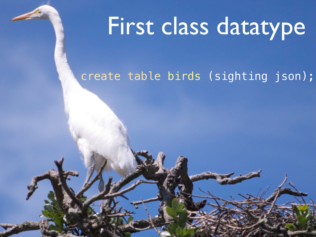 First class datatype create table birds (sighti...