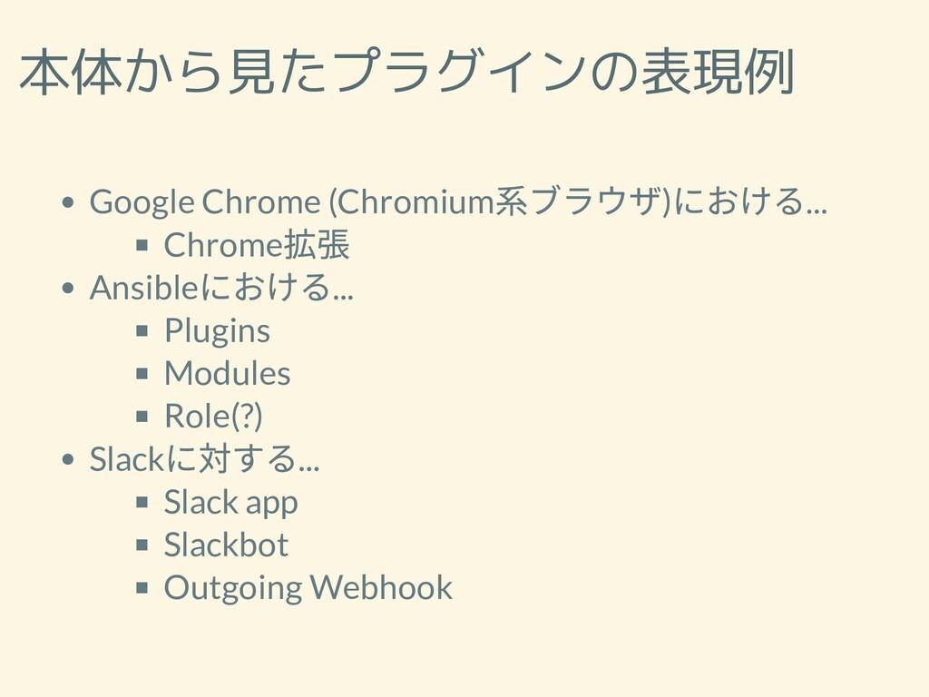 本体から見たプラグインの表現例 Google Chrome (Chromium 系ブラウザ) ...