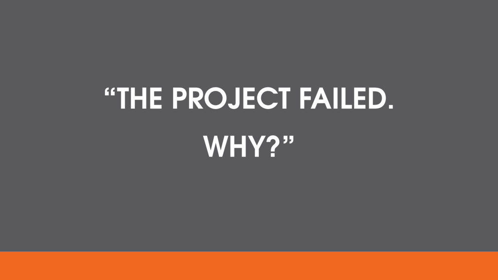"""""""THE PROJECT FAILED. WHY?"""""""