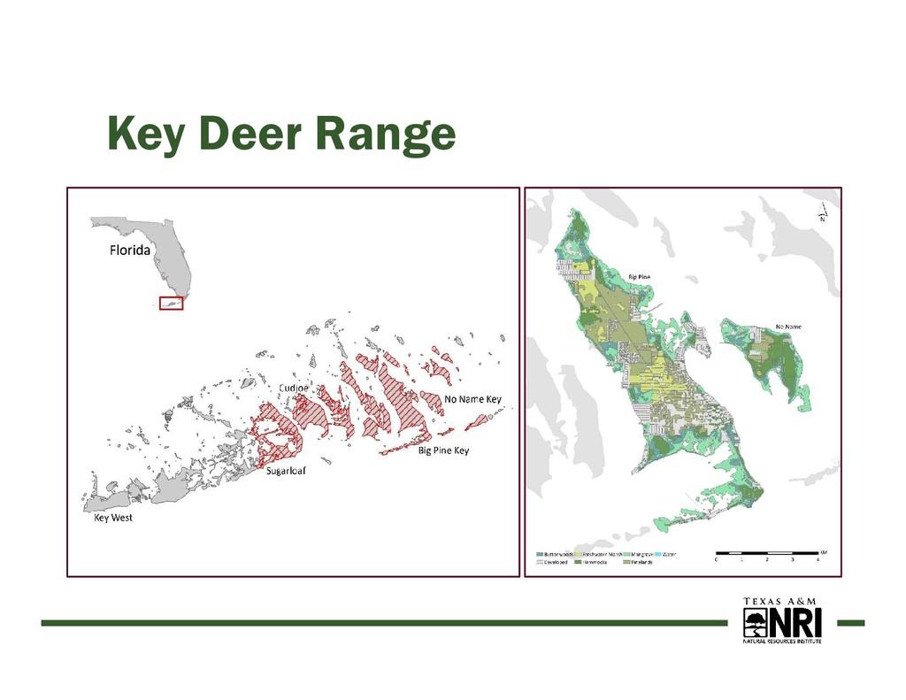 Key Deer Range