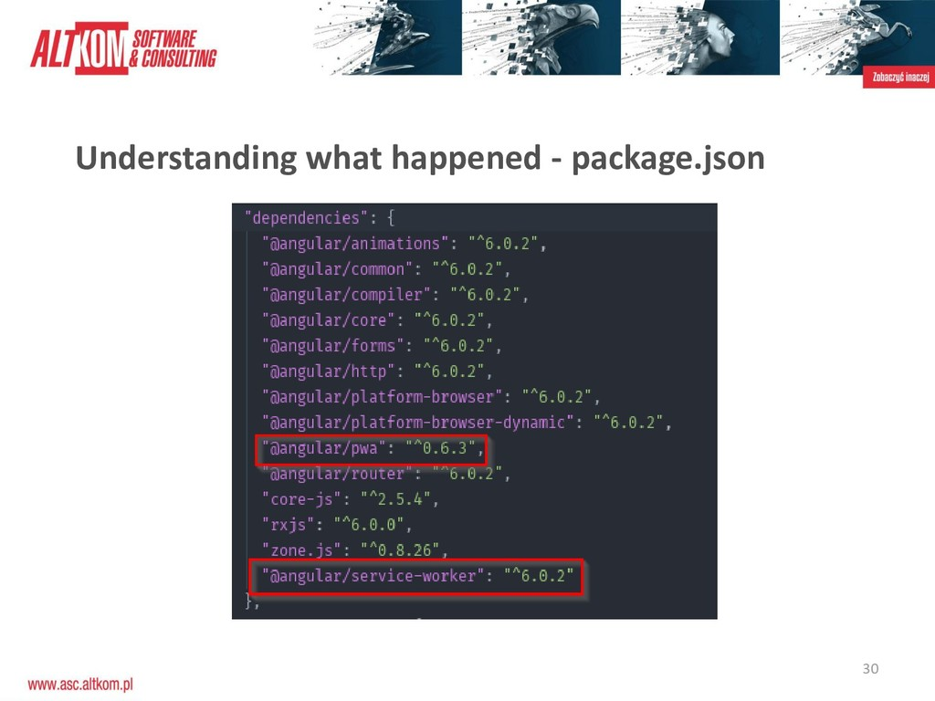 30 Understanding what happened - package.json