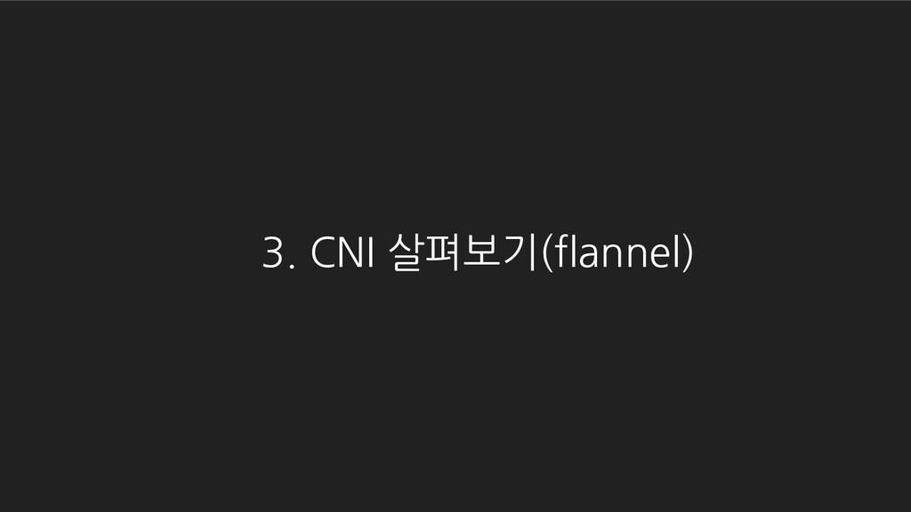 3. CNI 살펴보기(flannel)