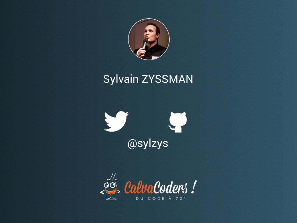 Sylvain ZYSSMAN @sylzys