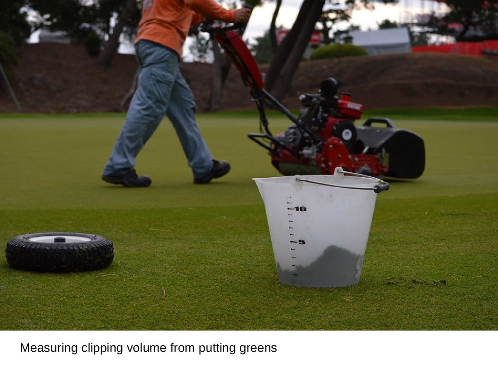 Measuring clipping volume from putting greens