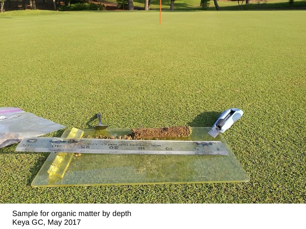 Sample for organic matter by depth Keya GC, May...