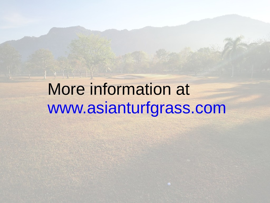 More information at www.asianturfgrass.com