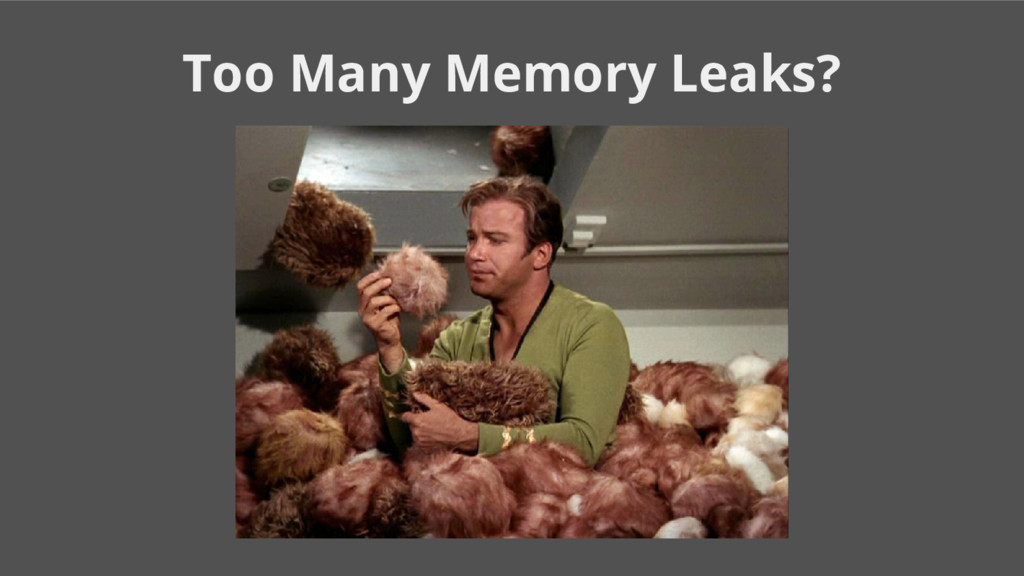Too Many Memory Leaks?