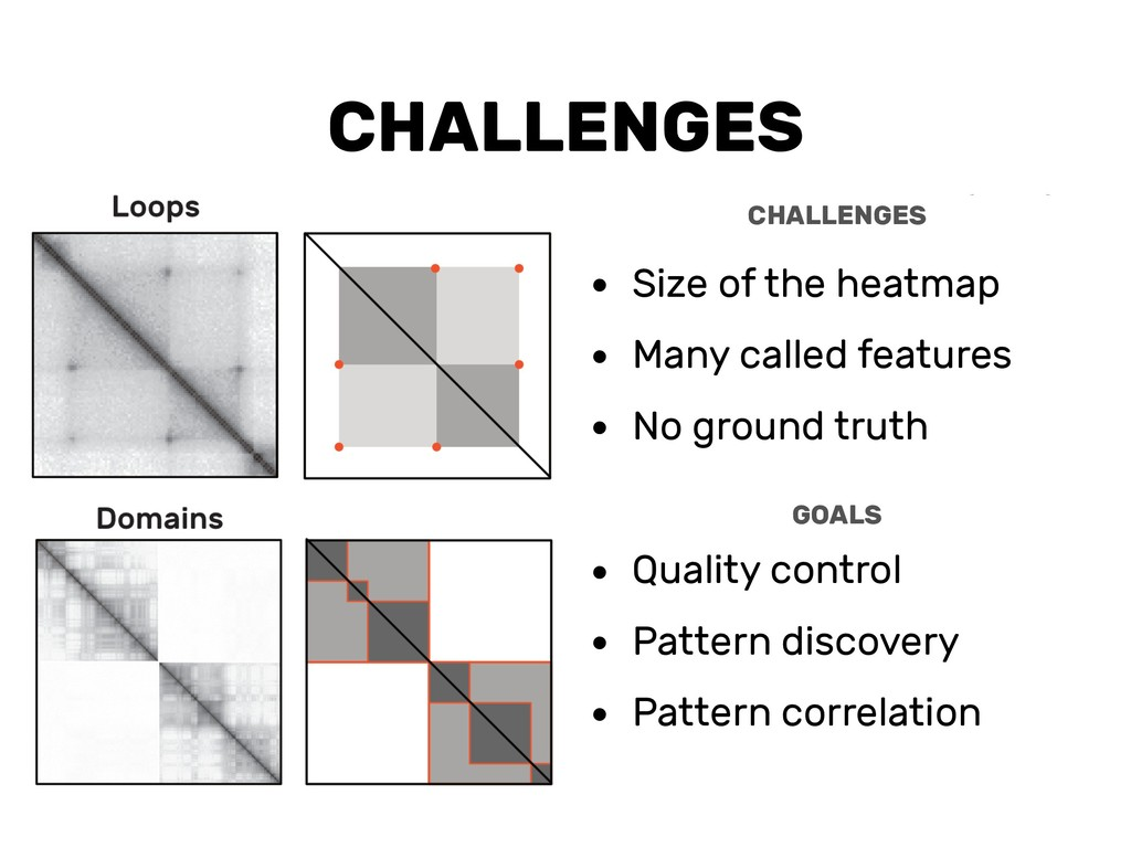 CHALLENGES • Size of the heatmap • Many called ...