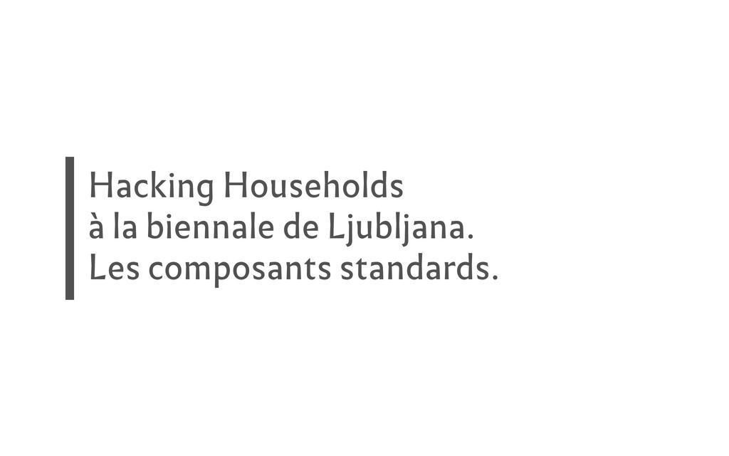 Hacking Households à la biennale de Ljubljana. ...