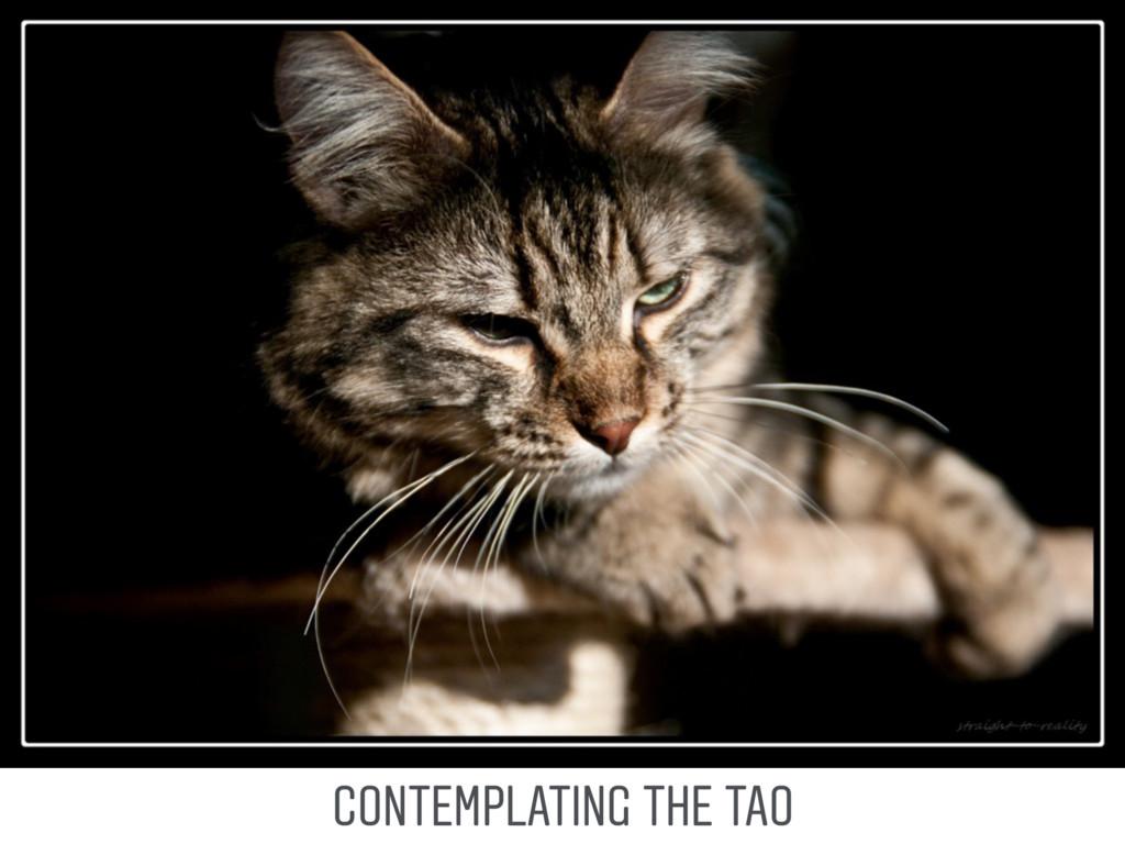 CONTEMPLATING THE TAO