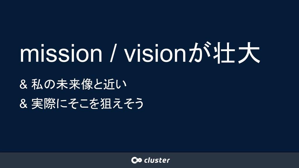 mission / visionが壮大 & 私の未来像と近い & 実際にそこを狙えそう