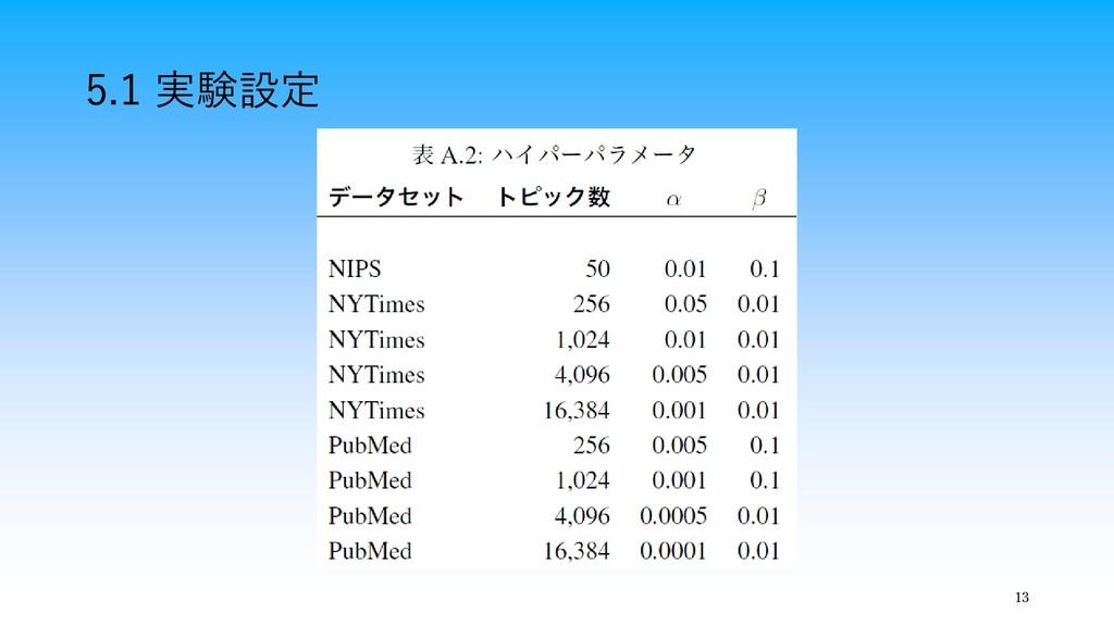 13 5.1 実験設定