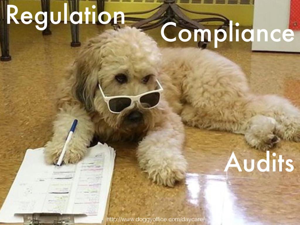 Regulation Compliance Audits http://www.doggyof...