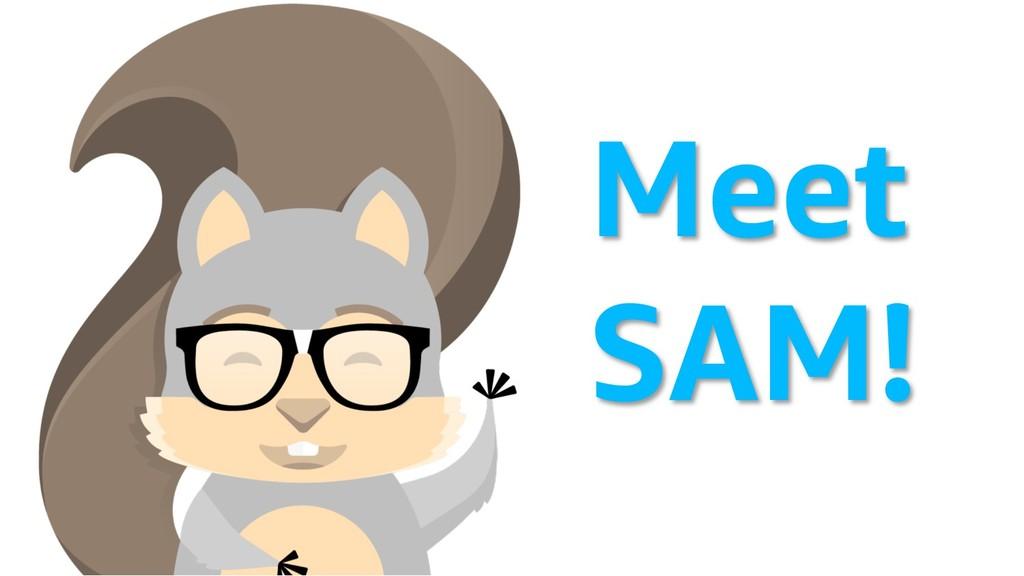 Meet SAM!
