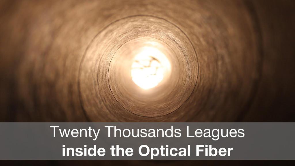 Twenty Thousands Leagues inside the Optical Fib...