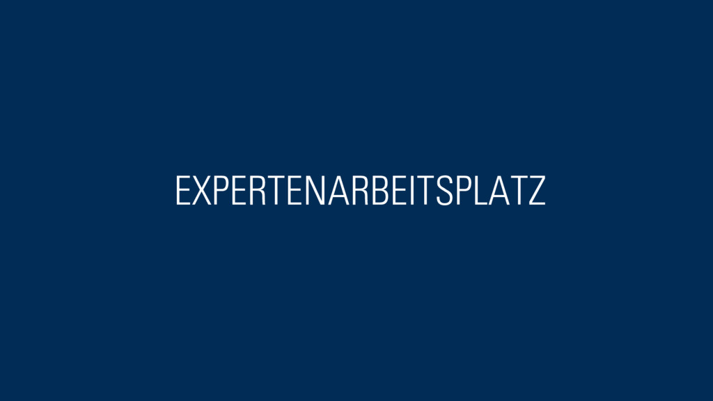 EXPERTENARBEITSPLATZ